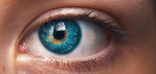 ما أسباب ضعف شبكية العين