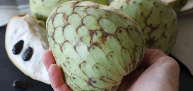 فاكهة القشطة والسرطان