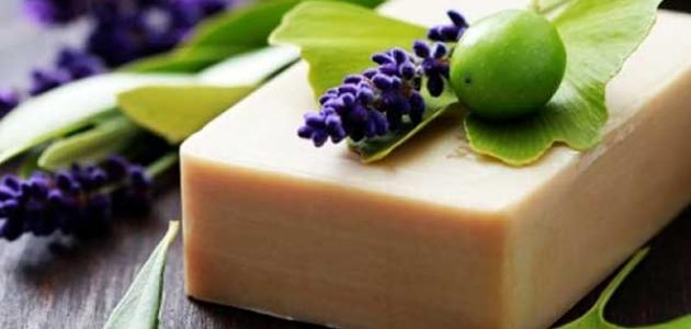 ما هو صابون الغار