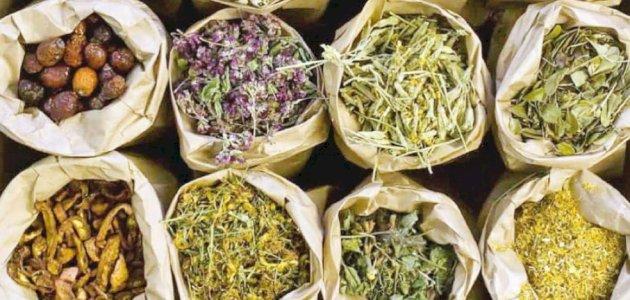 علاج البهاق بالأعشاب: حقيقة أم خرافة قد تضرك؟