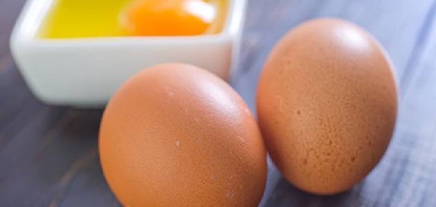 فوائد البيض النيء للجنس