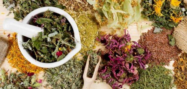 هل يوجد علاج لالتهاب اللثة بالأعشاب؟ وما رأي العلم؟