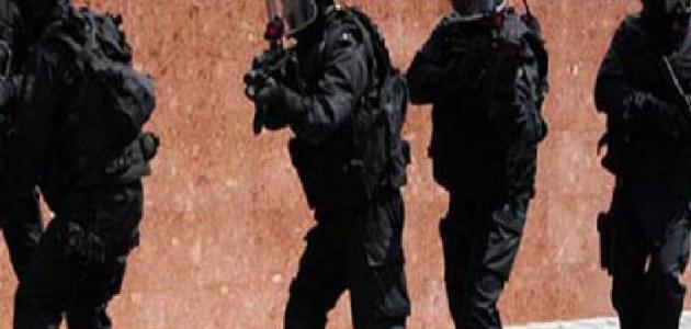 عناصر الأمن القومي