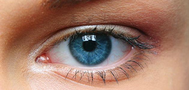 ما هو بؤبؤ العين