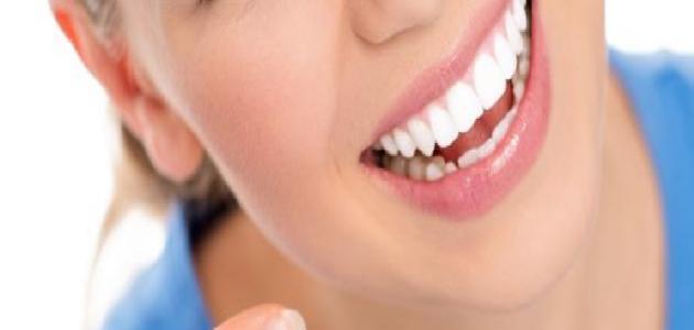 فوائد زبد البحر للأسنان