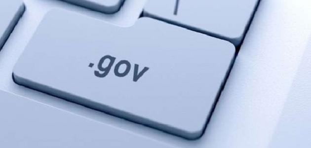 أسباب ظهور الحكومة الإلكترونية