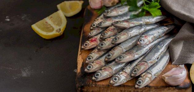 فوائد سمك الأنشوجة