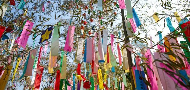 فعاليات مهرجان التاناباتا