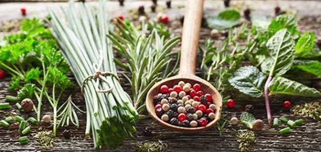 علاج الدم في البول بالأعشاب: حقيقة أم خرافة قد تضرك؟