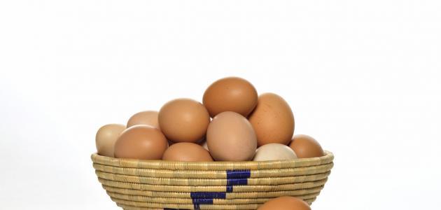 فوائد البيض البلدي مع الحليب