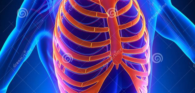 أسباب ألم عظام القفص الصدري