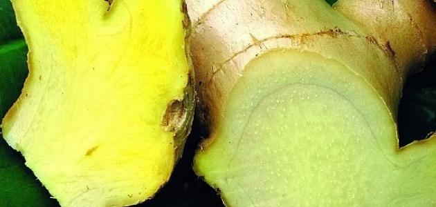 فوائد الزنجبيل الأخضر للكرش