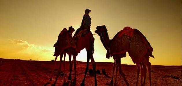 موضوع تعبير عن الهجرة النبوية