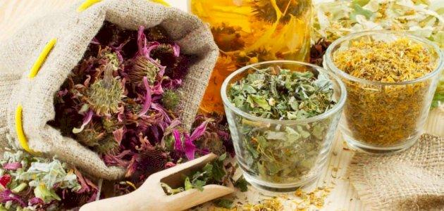 هل يوجد علاج للإكزيما بالأعشاب؟ وما رأي العلم؟