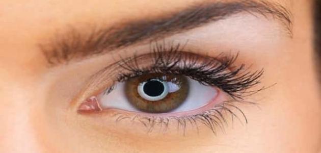 كيفية تفتيح لون العين بالعسل