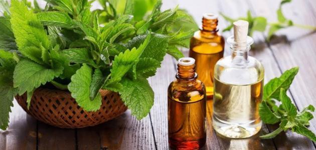 فوائد-زيت-الشاي-الأخضر-للشعر/