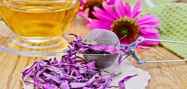 علاج البرد في الجسم بالأعشاب