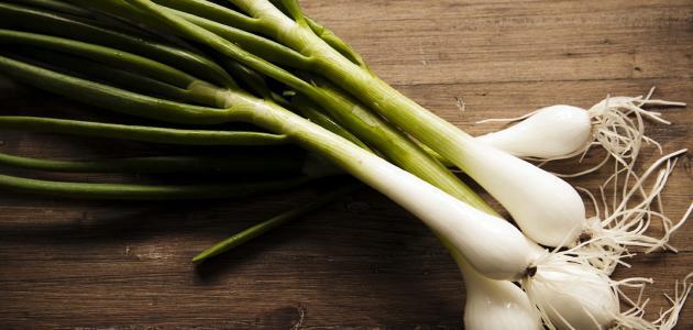 فوائد البصل الأخضر للرجيم