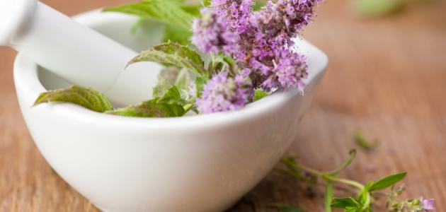 علاج الحروق بالأعشاب