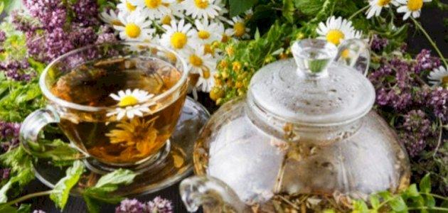 علاج حساسية الطعام بالأعشاب: حقيقة أم خرافة قد تضرك؟