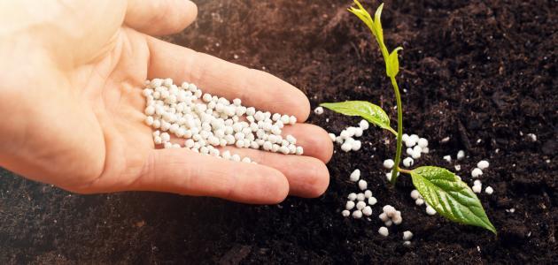 أفضل أنواع الأسمدة الزراعية