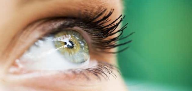 أدعية تحصين النفس من العين