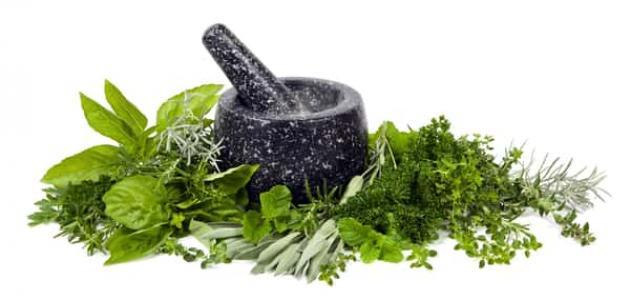 علاج انسداد الأنابيب بالأعشاب: حقيقة أم خرافة قد تضرك؟