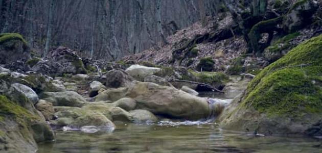 ما هي الصخور الصهارية