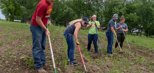 كيفية الحصول على تربة صالحة للزراعة