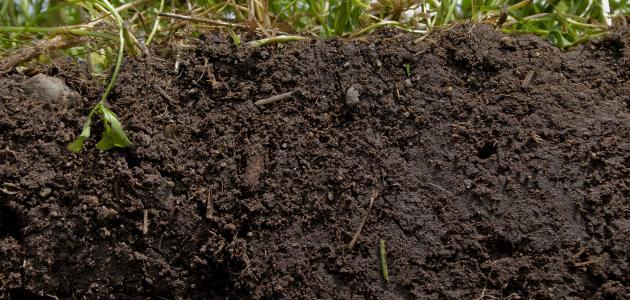 معلومات عن أنواع التربة