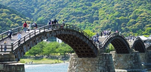 معلومات عن جسر ايواكوني