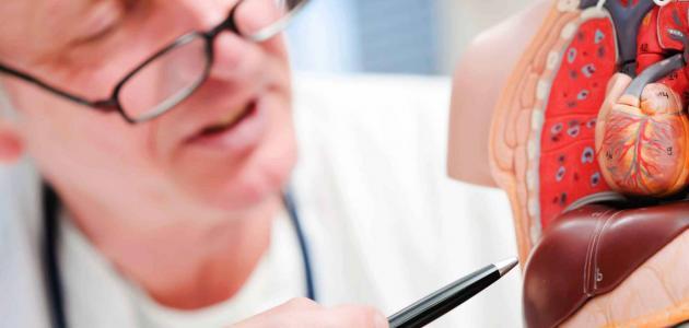 معلومات عن التهاب الكبد الفيروسي