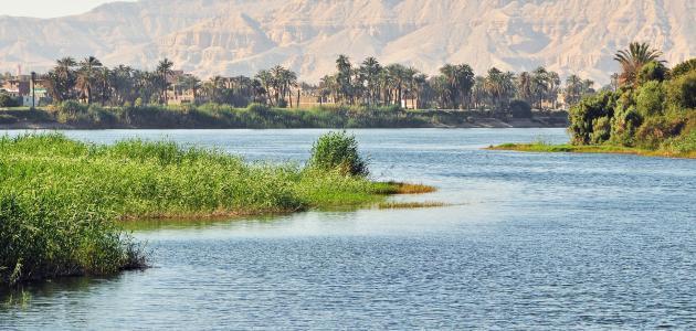 """""""الان"""" تعبير عن نهر النيل شريان الحياة"""