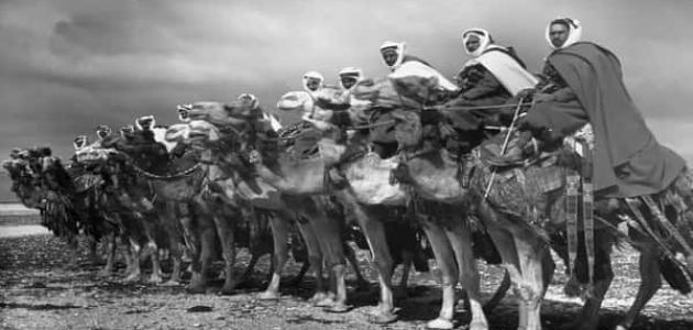 معلومات عن الثورة العربية الكبرى