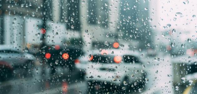 فوائد وأضرار رطوبة الجو