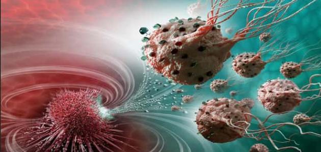 معلومات عن الأورام السرطانية