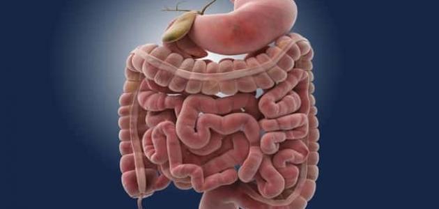 أمراض الأمعاء الدقيقة