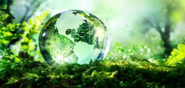 معلومات عن ظاهرة التنوع الحيوي