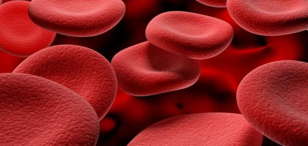 معلومات عن فقر الدم الانحلالي