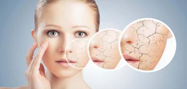 طرق علاج البشرة الجافة