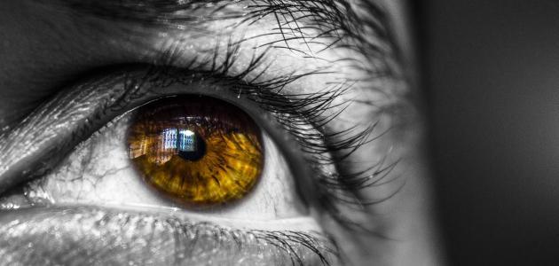 أعراض قرب الإصابة بمرض العمى