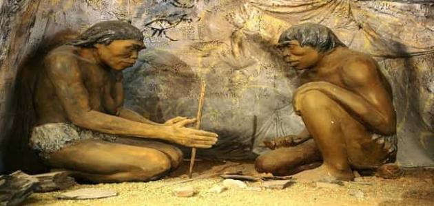 معلومات عن الإنسان القديم في العصر الحجري