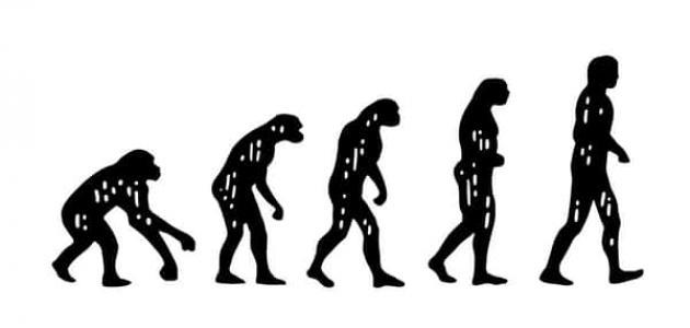 تطور نظرية داروين