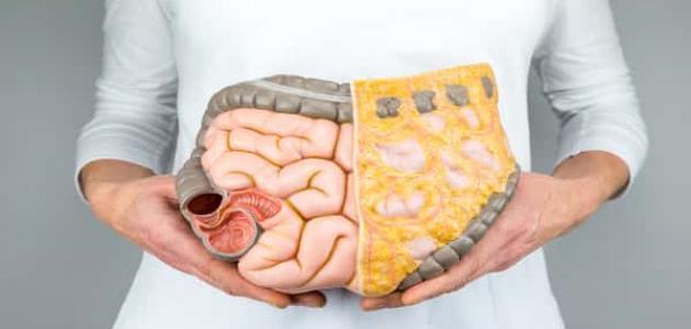 أمراض الجهاز الهضمي الأكثر انتشاراً