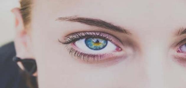 طرق فهم لغة العيون