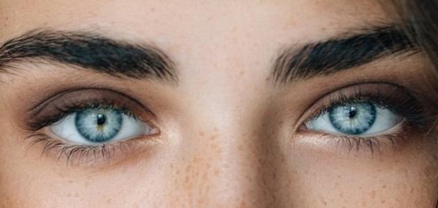 كلام عن العيون