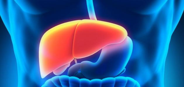 طرق علاج صفار الكبد بالأعشاب