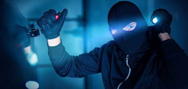 أسباب السرقة