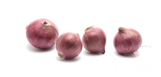 فوائد أكل البصل النيء