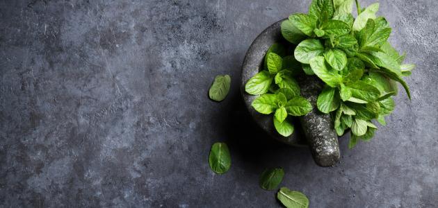 هل يوجد علاج لفقدان الشم والتذوق بالأعشاب؟ وما رأي العلم؟